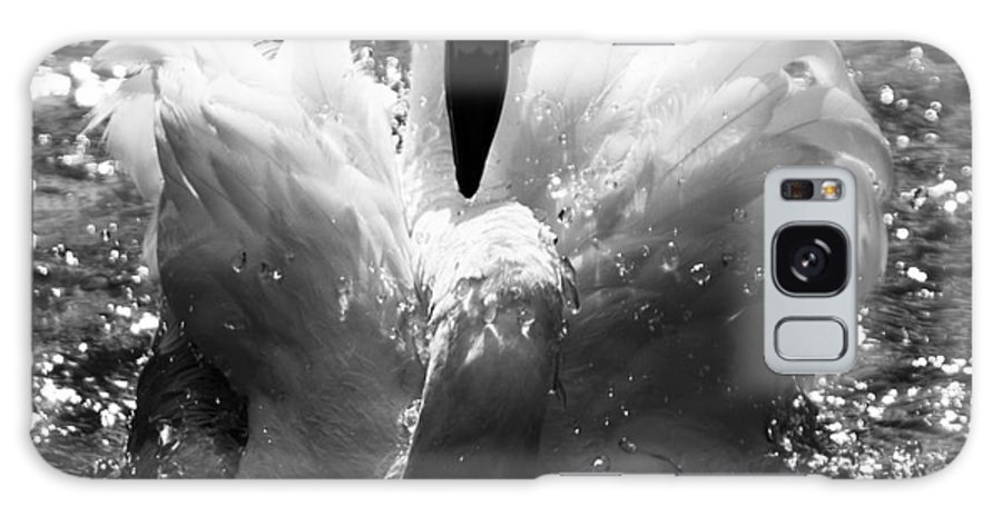 Flamingo Galaxy S8 Case featuring the photograph In The Water by Angel Ciesniarska