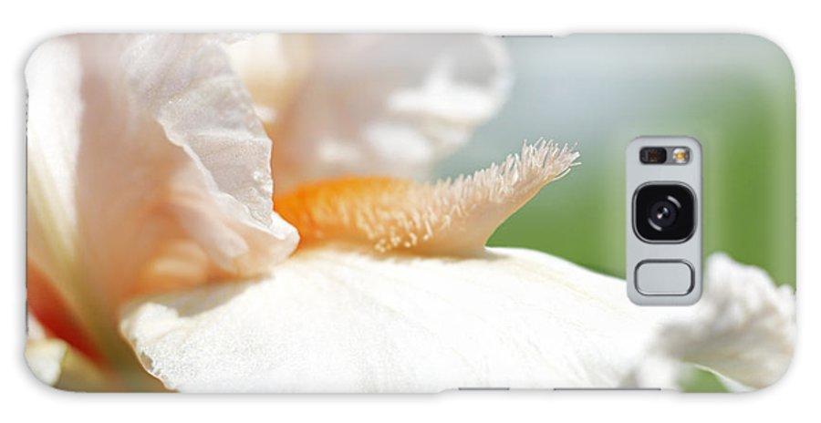 Genus Iris Galaxy Case featuring the photograph Iris Flowers by Tony Cordoza