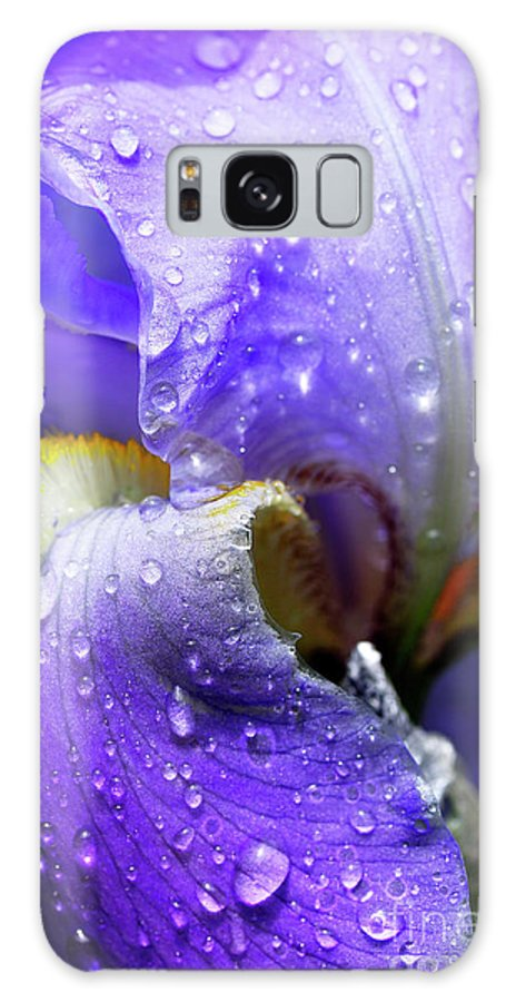 Iris Galaxy S8 Case featuring the photograph Iris With Raindrops by Thomas R Fletcher