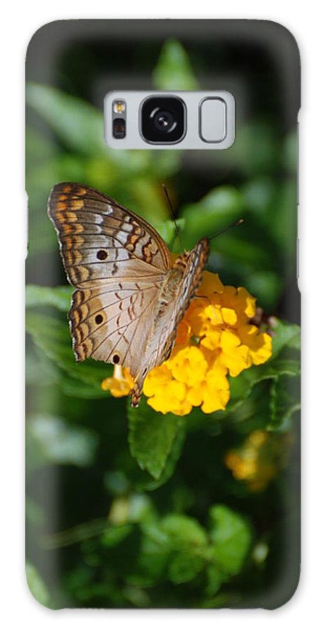 Butterfly Galaxy S8 Case featuring the photograph Landed by Rob Hans