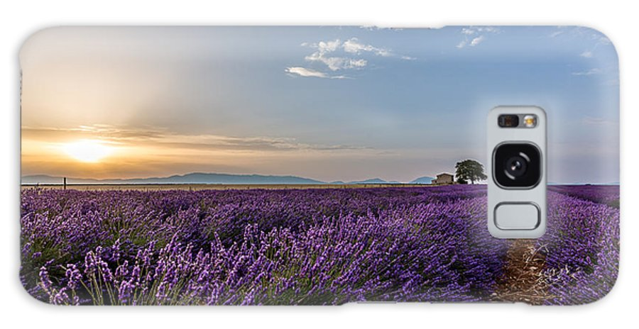 Lavander Field Galaxy S8 Case featuring the photograph Lavander Field Luberon by Stephane Grossin