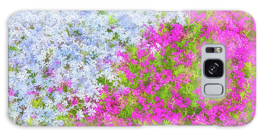 Phlox Galaxy S8 Case featuring the painting Pink And Purple Phlox by Andrea Kappler