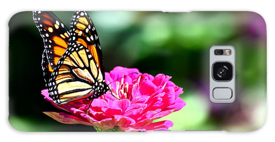 Monarch Galaxy S8 Case featuring the photograph Monarch Butterfly On Pink Flower by Reva Steenbergen