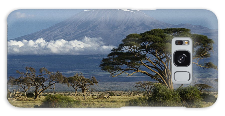 Africa Galaxy S8 Case featuring the photograph Mount Kilimanjaro by Michele Burgess