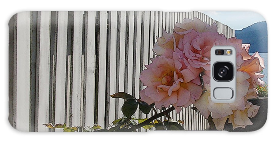 Rose Galaxy Case featuring the photograph Orcas Island Rose by Tim Nyberg