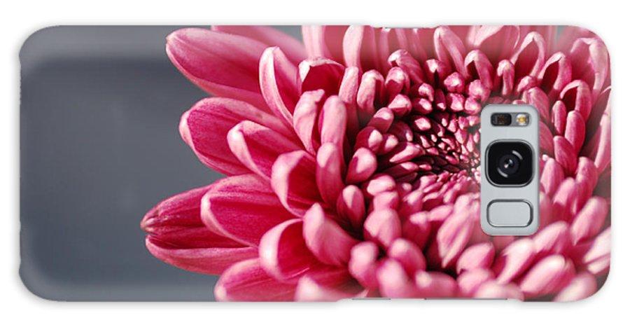 Flower Galaxy S8 Case featuring the photograph Pink Flower by Jill Reger