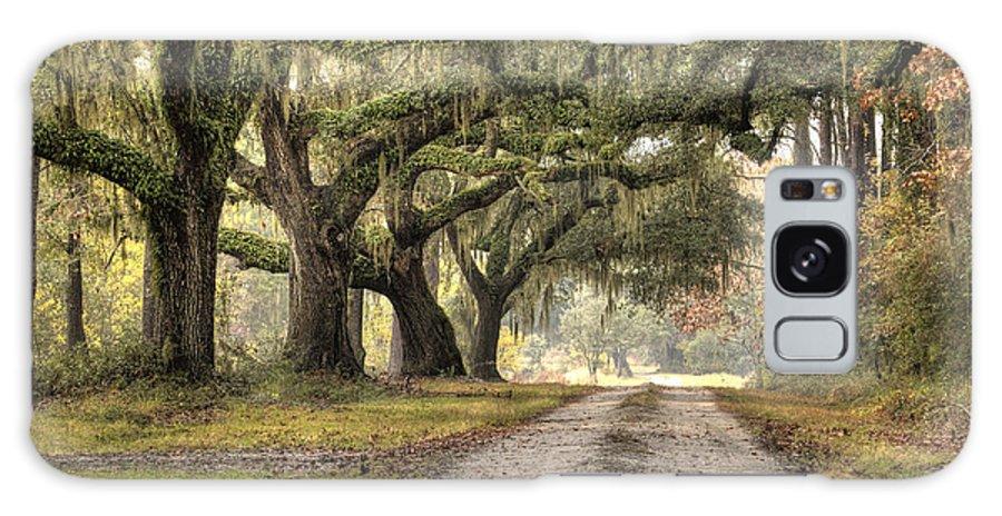 Live Oak Galaxy S8 Case featuring the photograph Plantation Drive Live Oaks by Dustin K Ryan