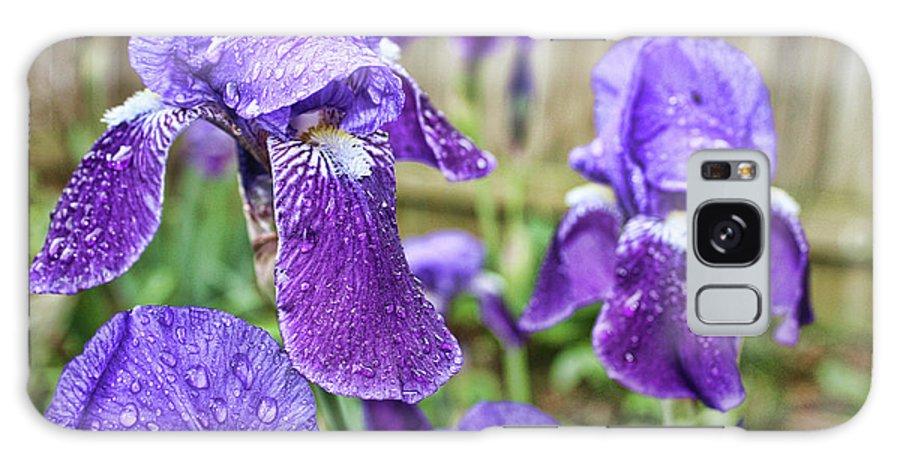 Elegant Galaxy S8 Case featuring the photograph Purple Iris by Alexander Butler