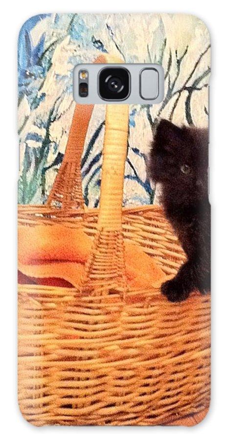 Cat Kitten Basket Galaxy S8 Case featuring the photograph Sassy Cat by Deb Schneider