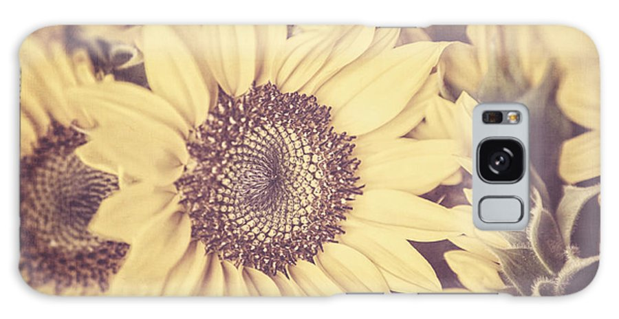 Sunflower Galaxy S8 Case featuring the photograph Sunflowers by Lisa Russo
