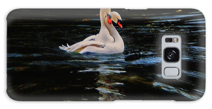Swans Galaxy S8 Case featuring the photograph Swans by Daniele Smith
