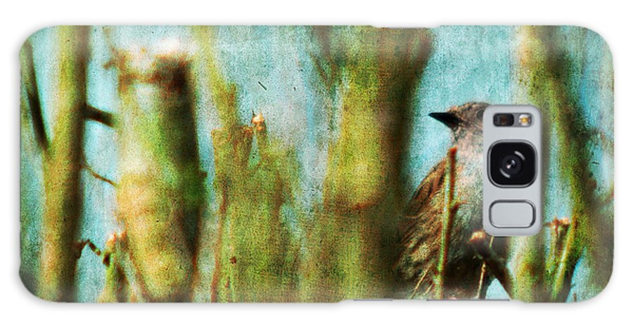Thrush Galaxy S8 Case featuring the photograph The Thrush by Angel Ciesniarska