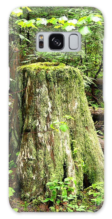 Moss Galaxy S8 Case featuring the photograph Transition by Idaho Scenic Images Linda Lantzy