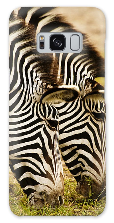 Africa Galaxy S8 Case featuring the photograph Twins In Stripes by Michele Burgess