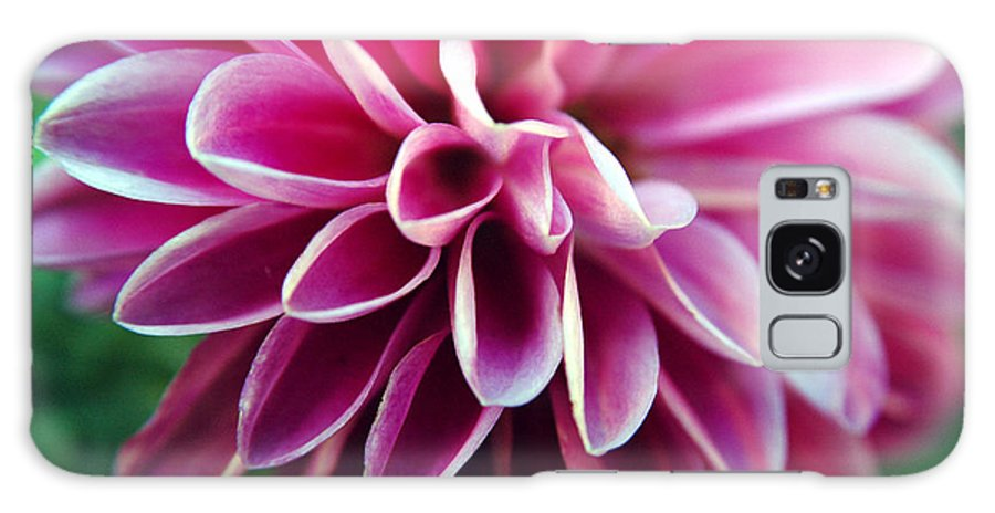 Flower Galaxy Case featuring the photograph Untitled by Kathy Schumann
