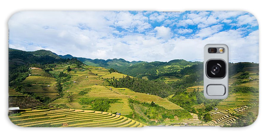 Rice Terraces In Harvest Time Galaxy S8 Case featuring the photograph Vietnam Rice Terraces by Dong Bui