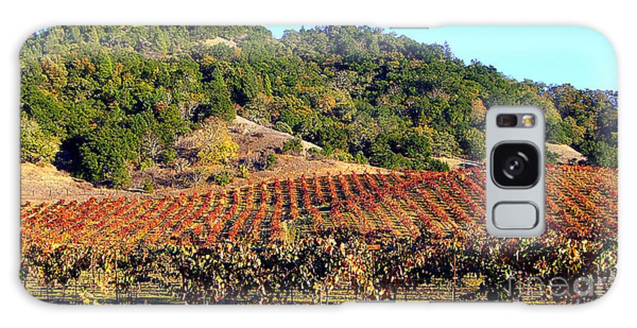 North California Napa Valley Wine Country Galaxy S8 Case featuring the photograph Vineyard 3 by Xueling Zou