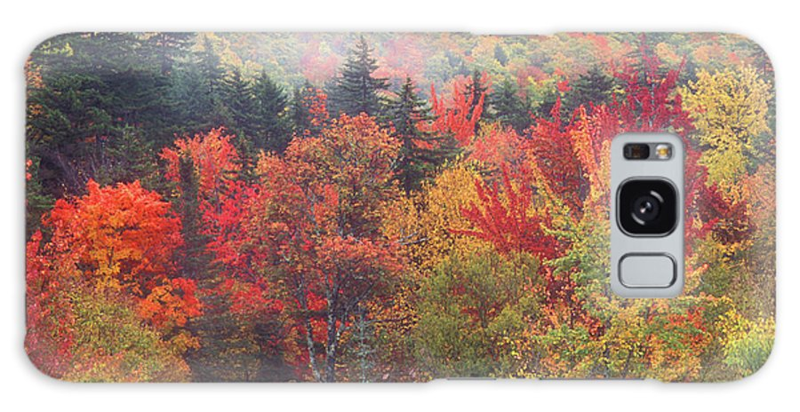 New Hampshire Galaxy S8 Case featuring the photograph White Mountain Foliage by John Burk