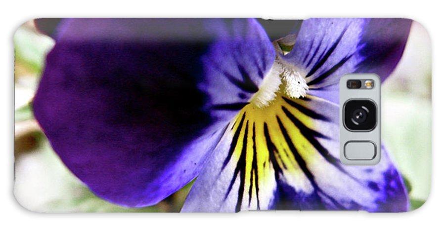 Wild Ground Flower Galaxy S8 Case featuring the photograph Wild Ground Flowers by Debra   Vatalaro