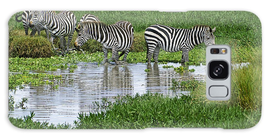 Africa Galaxy S8 Case featuring the photograph Zebras In The Swamp by Michele Burgess