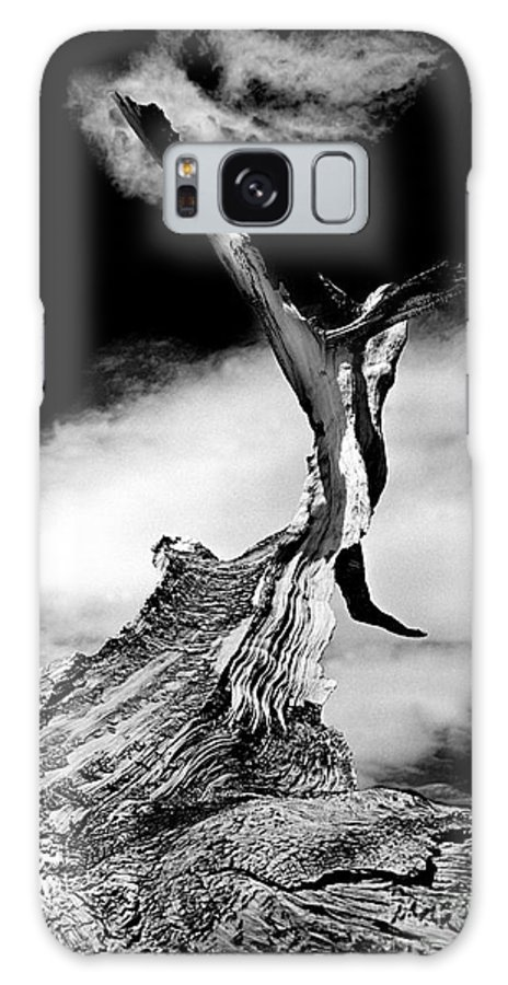 Tree Galaxy S8 Case featuring the photograph 1000 Years To Create by Paul W Faust - Impressions of Light