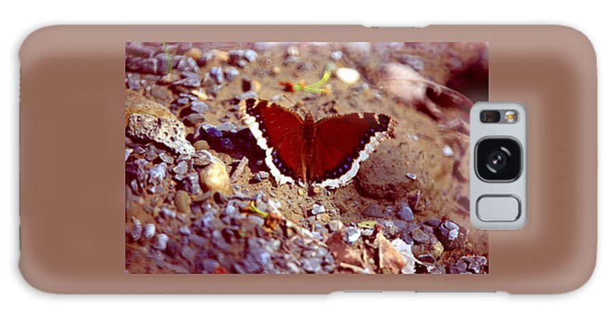 Butterfly Galaxy Case featuring the photograph 113093-1 by Mike Davis