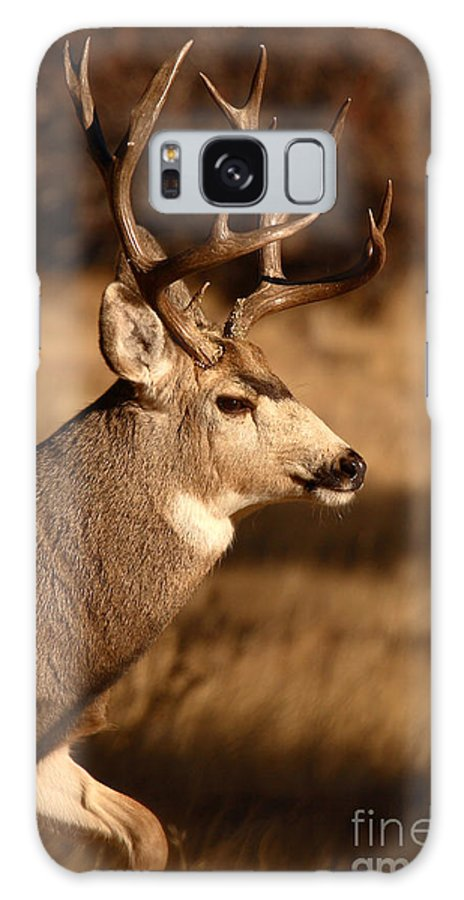 Deer Galaxy Case featuring the photograph 15-point Mule Deer Stepping Along by Max Allen