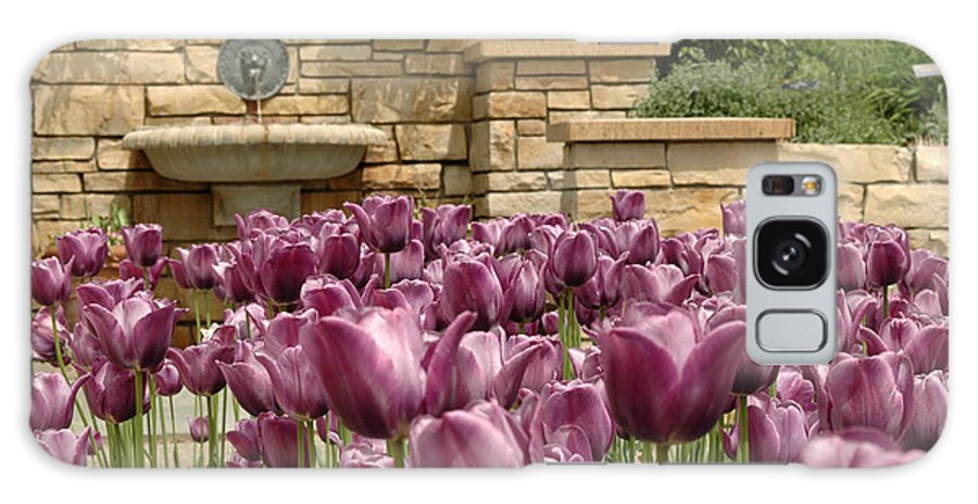 Flora Galaxy Case featuring the photograph Untitled by Kathy Schumann