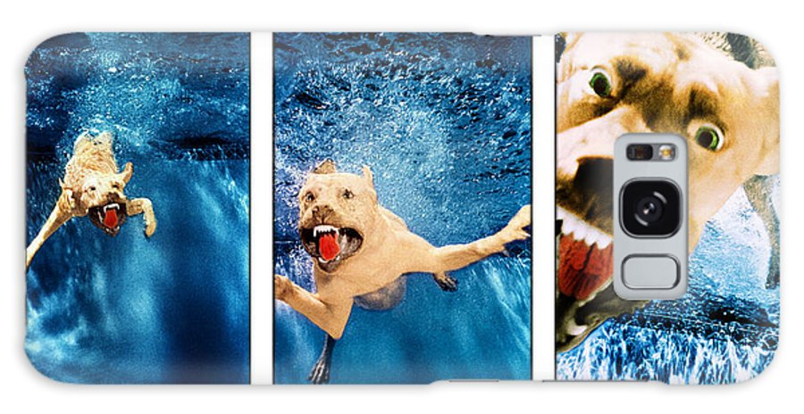 Dog Galaxy S8 Case featuring the photograph Dog Underwater Series by Jill Reger