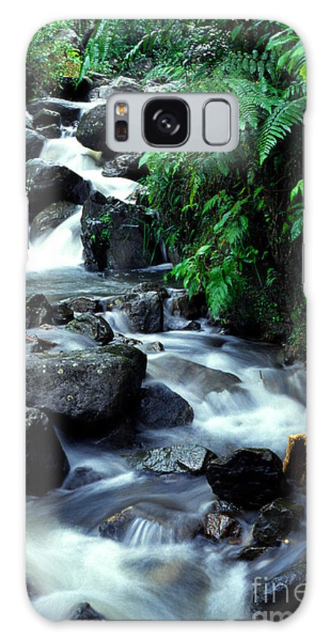 Puerto Rico Galaxy S8 Case featuring the photograph El Yunque Waterfall by Thomas R Fletcher