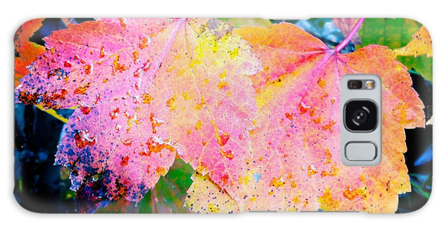 Iphoneography Galaxy S8 Case featuring the photograph Fall Leaves by Matt Suess