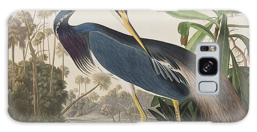 Louisiana Heron Galaxy S8 Case featuring the painting Louisiana Heron by John James Audubon