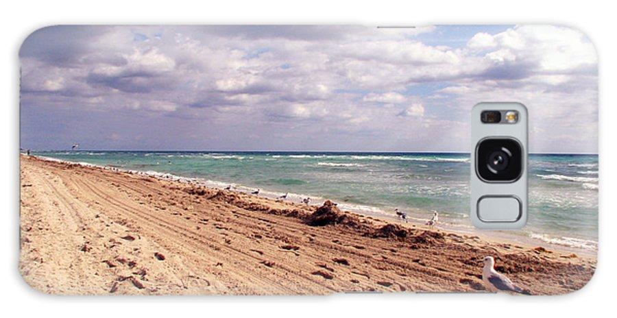 Beaches Galaxy S8 Case featuring the photograph Miami Beach by Amanda Barcon