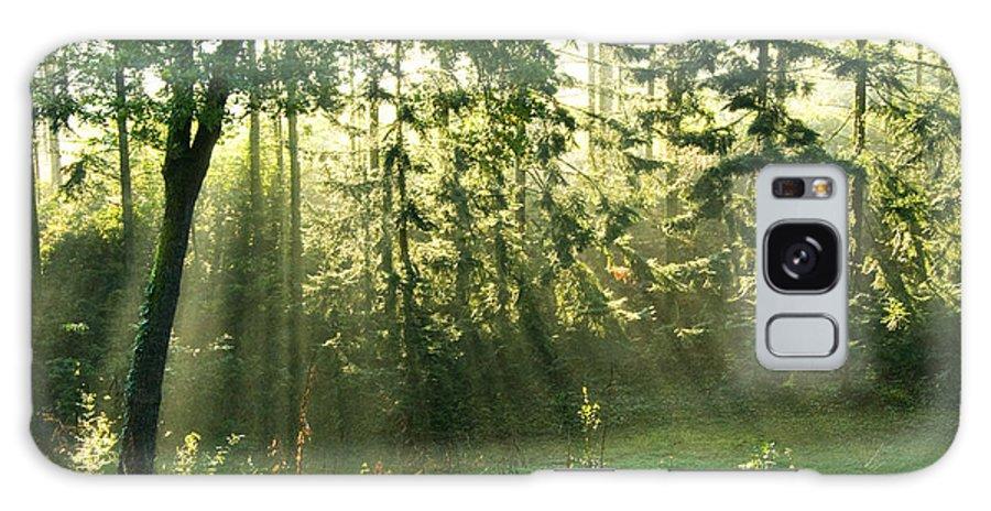 Light Galaxy S8 Case featuring the photograph Morning Light by Daniel Csoka