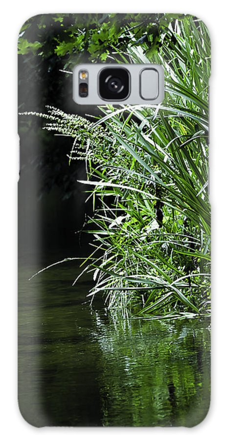 Birch Tree Galaxy S8 Case featuring the photograph Pond by Svetlana Sewell