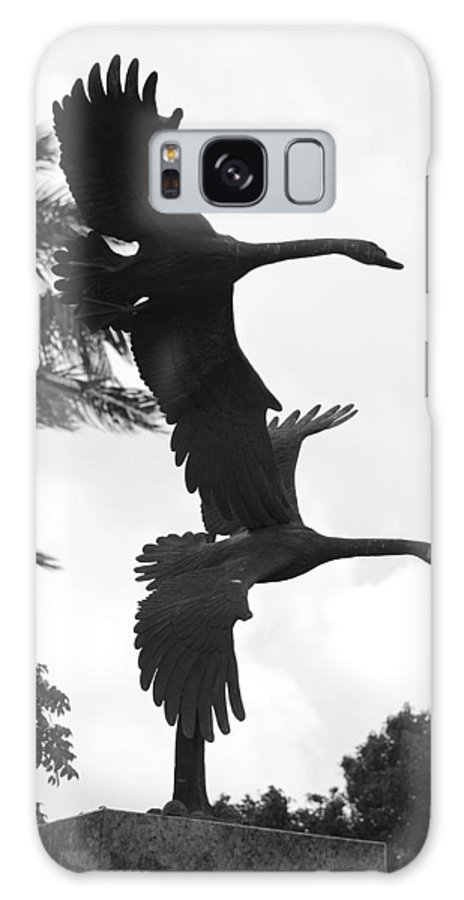 Black And White Galaxy S8 Case featuring the photograph Stone Birds by Rob Hans