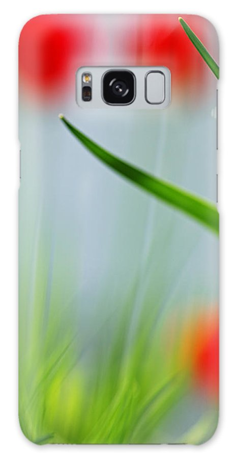 Tulips Galaxy S8 Case featuring the photograph Tulips by Silke Magino