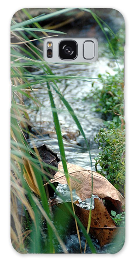 Stream Galaxy S8 Case featuring the photograph Untitled by Kathy Schumann