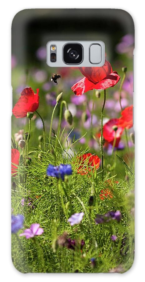 'wild Flowers' Flowers Galaxy S8 Case featuring the photograph Wild Flowers And Red Poppies by Natasha Balletta
