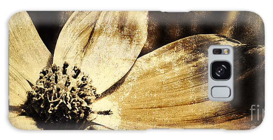 Flower Galaxy S8 Case featuring the photograph Yesterday's Flower by Pam Holdsworth