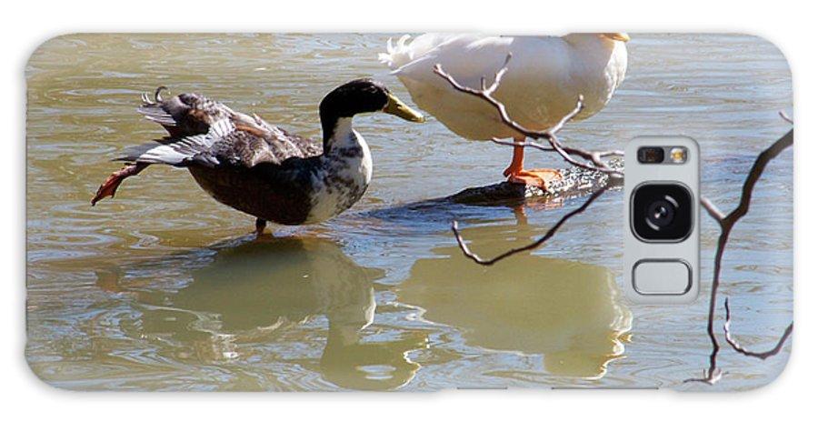Ducks Galaxy S8 Case featuring the photograph 2002-ducks by Martha Abell