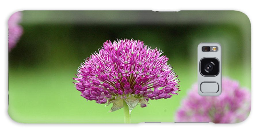 Purple Galaxy Case featuring the photograph Untitled by Kathy Schumann