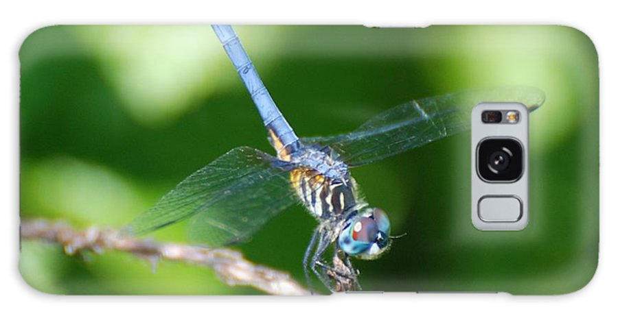 Dragonfly Galaxy S8 Case featuring the photograph Dragon Fly by Rob Hans