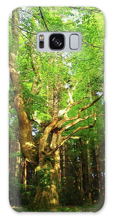 Landscape Galaxy S8 Case featuring the photograph Hazelwood Co Sligo Ireland by Louise Macarthur Art and Photography