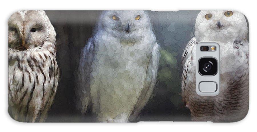 Owl Galaxy S8 Case featuring the digital art 3 Owls On A Branch by Daniel Hagerman