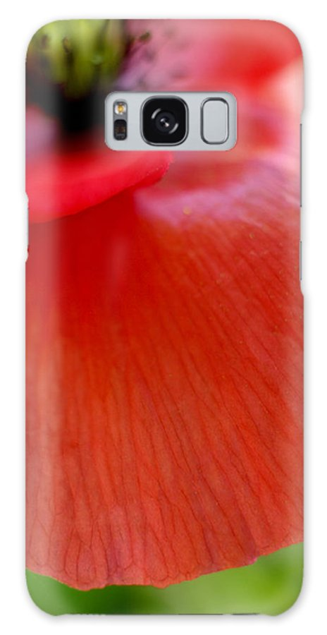 Poppy Galaxy S8 Case featuring the photograph Poppy by Silke Magino