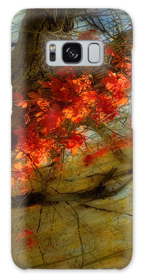 Trees Galaxy S8 Case featuring the photograph 3927 by Peter Holme III