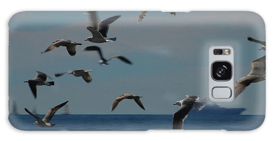 Gull Galaxy S8 Case featuring the photograph 3d Gulls by Jean Booth