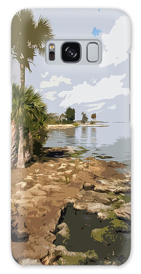 Castaway Galaxy S8 Case featuring the painting Castaway Point On The Indian River Lagoon With Coquina Rock by Allan Hughes
