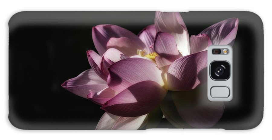 Lotus Flowers Galaxy Case featuring the photograph Lotus Blossom 5 by Tom Stovall Sr